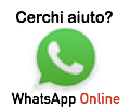 Apri la chat di whatsapp per ALICE
