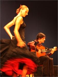 Immagine di Andrea Mercati Flamenco