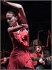Pagina personale di Andrea Mercati Flamenco